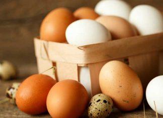 เมนูไข่ cover